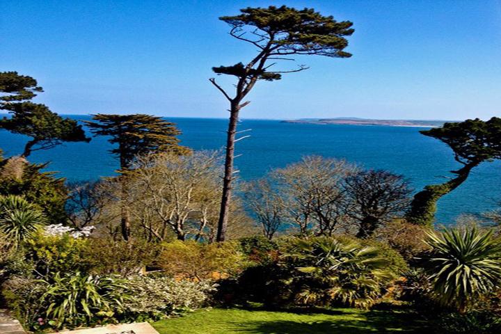 4 Garden Overlooking St Ives Bay