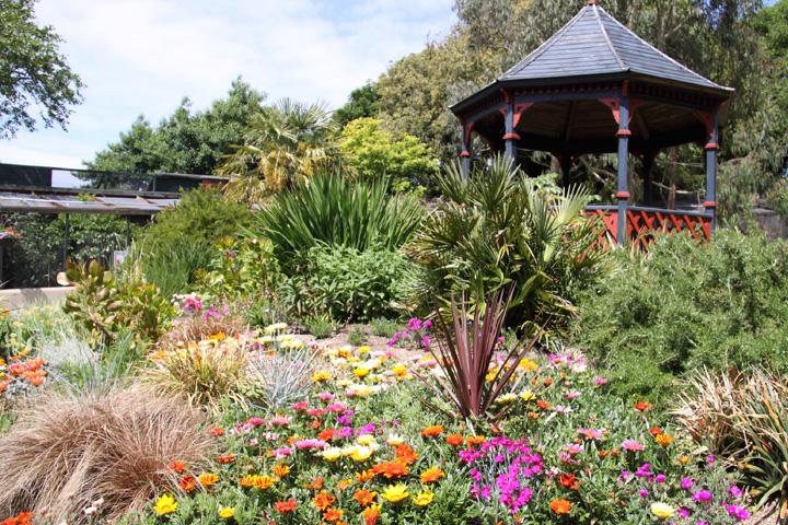 Gardens At Paradise Park Cornwall