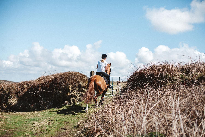 Horse Riding Away Lc 1500