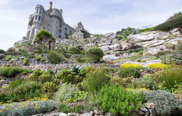 St Michaels Mount Garden Eastern Terrace Aug16 Credit Claire Braithwaite