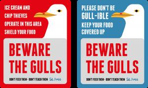 Stivesbid Stives Seagulls Signs Double